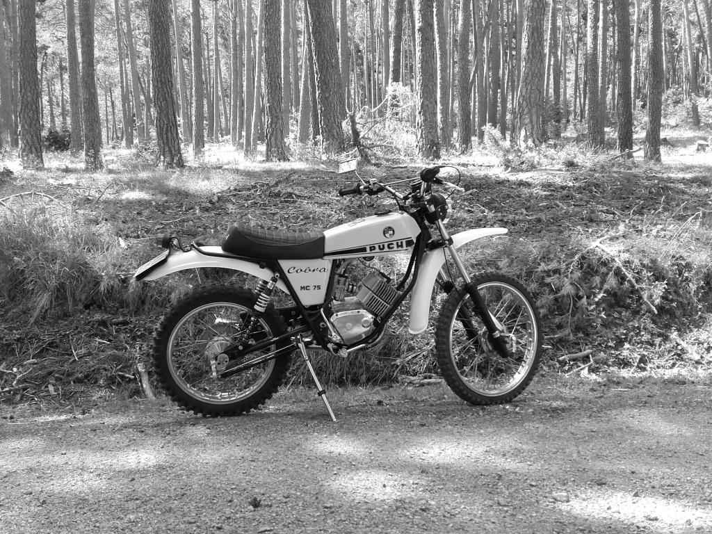 Puch Cobra MC 75 - Cantidad de aceite motor 5bsl94