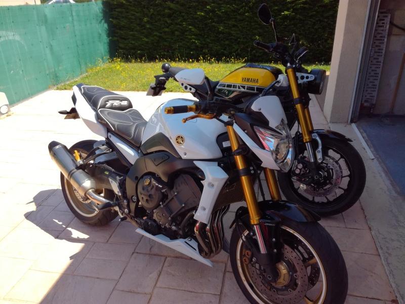 XSR900 ombrosia 6dwo01