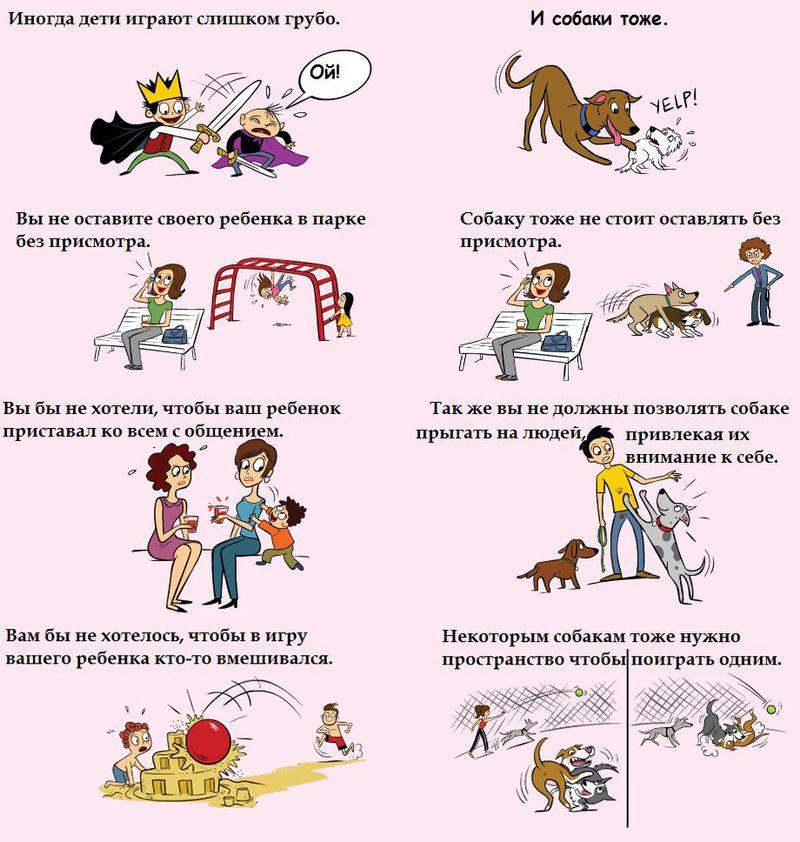 Советы начинающему собаководу (в картинках) - Страница 3 Eijgye