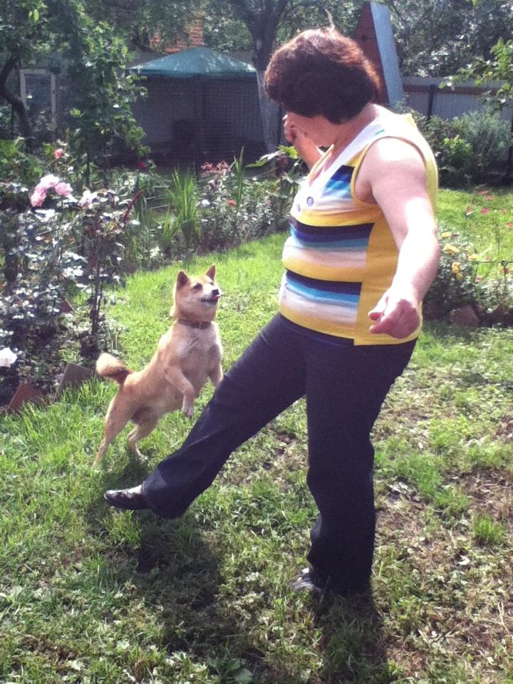 Танцы с собаками - Страница 4 Fka9tz