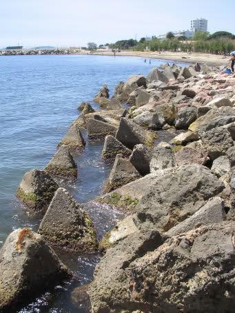La Badine - Salins d'Hyères  - Gapeau - Hyères plage 211nvrr