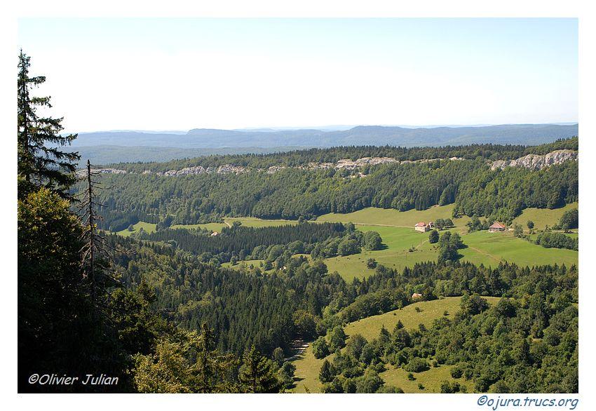 Quelques photos d'Olivier J. paysages et animaux jurassiens 20090824132439-1ae1f6ba