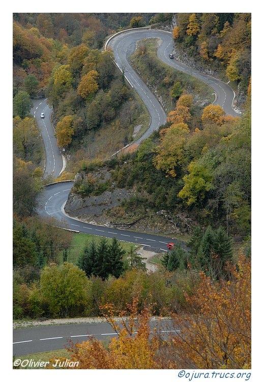 Quelques photos d'Olivier J. paysages et animaux jurassiens 20091112090035-68f36e92