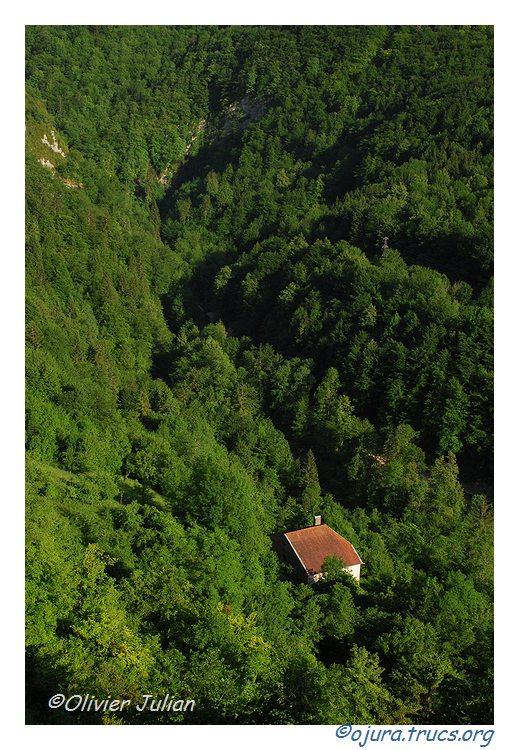 Quelques photos d'Olivier J. paysages et animaux jurassiens 20100605211831-f918f09b
