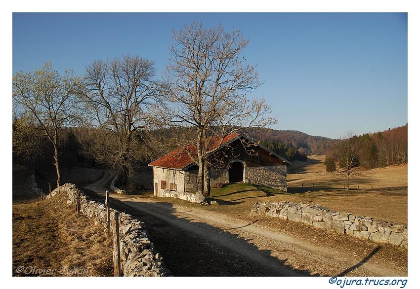 Quelques photos d'Olivier J. paysages et animaux jurassiens 20110323211948-4266432c