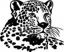 قصيدة وطنى .. ملهمتى .. حبيبتى Pol_il_Naklejka-na-sciane-Leopard-7607