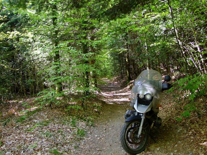 Vos plus belles photos de moto - Page 2 543769522_V8Rwc-L