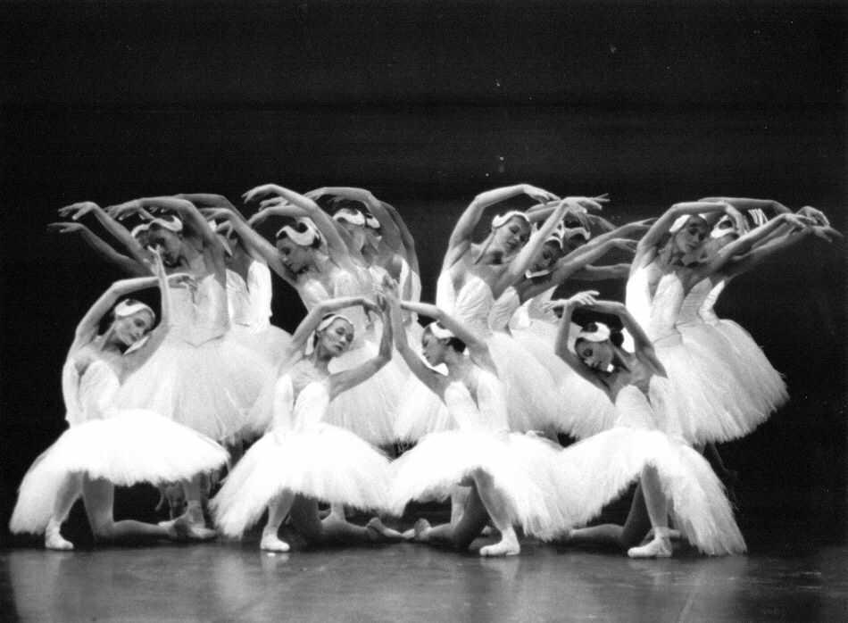 Corps de Ballet du Lac des Cygnes D-schwanensee4