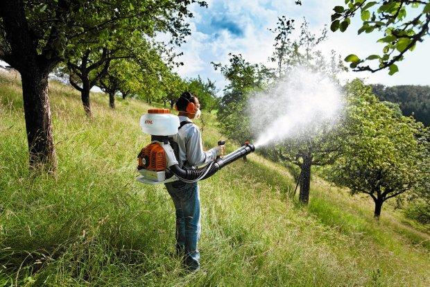 Metoda na pozbycie się pestycydów... Pestycydy3