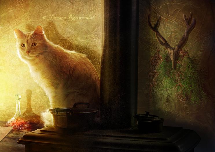 Философия в картинках - Страница 37 Witch_house_by_tamarar-d8ni4hj