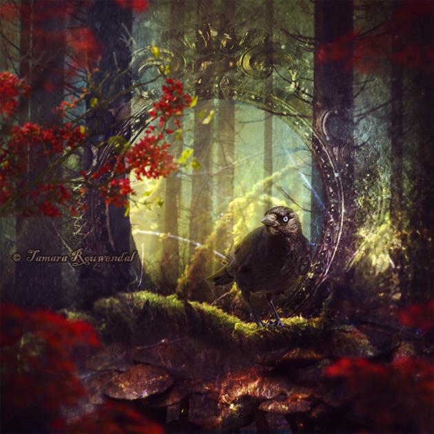 Философия в картинках - Страница 37 Sage_of_the_woods_by_tamarar-d8t9yzc