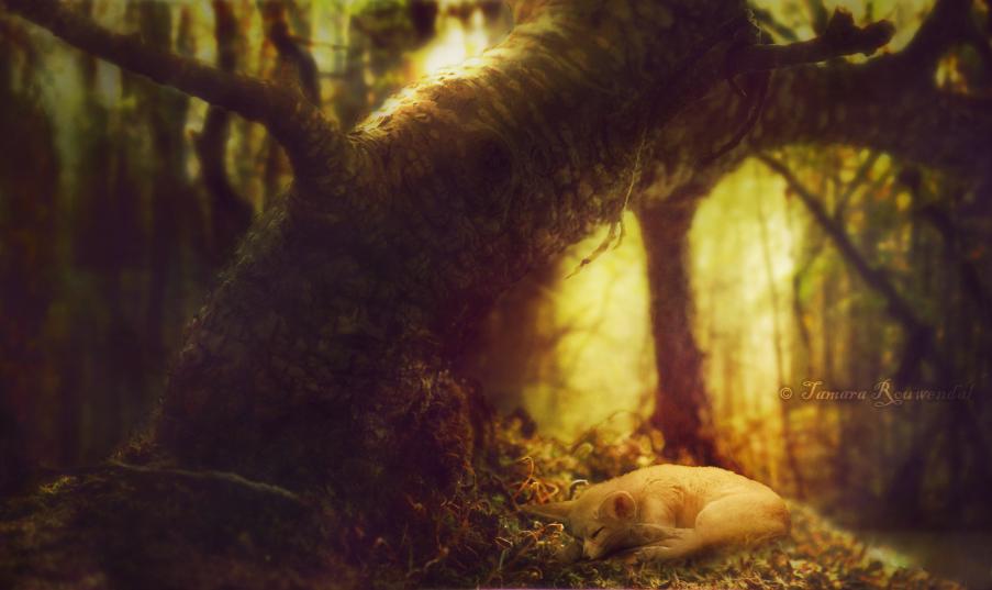 Философия в картинках - Страница 37 Little_forest_dweller_by_tamarar-d8rnv9c