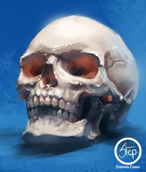 [ Step ]  Skull_by_tranenlarm-d8jkesk