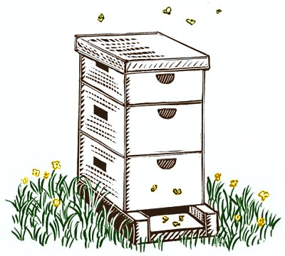 Are you buying yourself any Christmas presents? Beehive