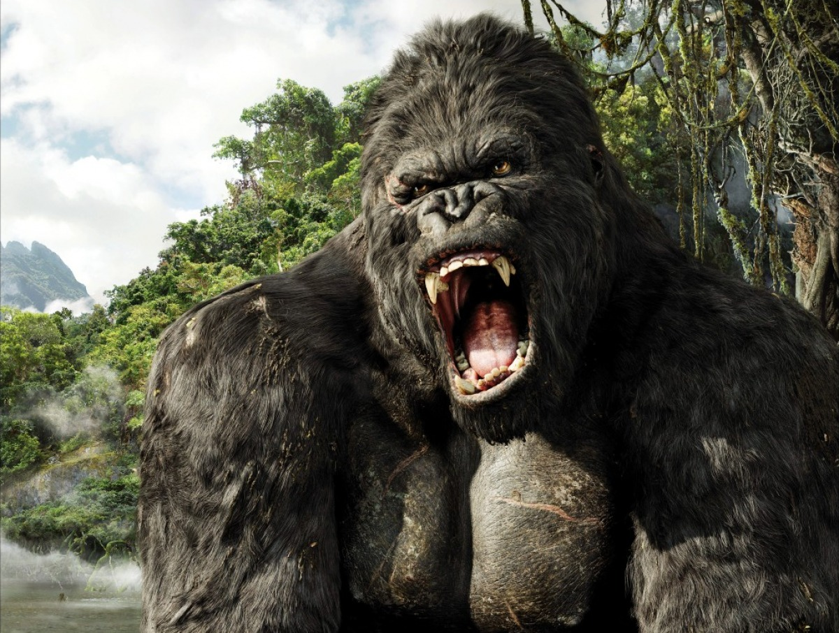 nos animaux familiers King-kong-2005-88-g