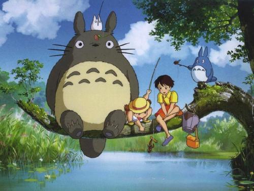 le camphrier Totoro(1)
