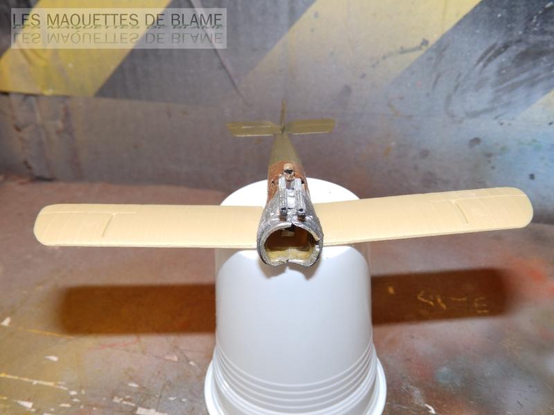 SOPWITH CAMEL F-1 [1/72] (N°3 NAVAL SQN, ROYAL NAVAL AIR SERVICE WALMER, DECEMBRE 1917) 116861307
