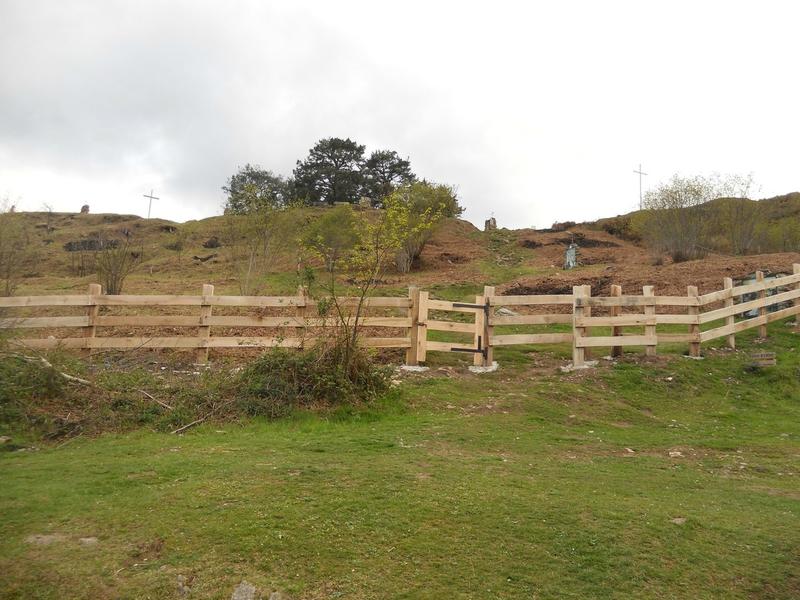 Les pins de Garabandal encerclés de clôtures  95611687