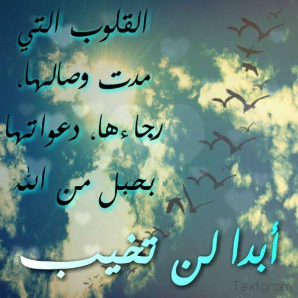 مشاعر في لوحة - صفحة 3 108427953