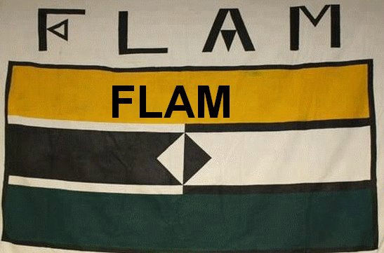 Flamme et Flaque contre les troll 98849911_o