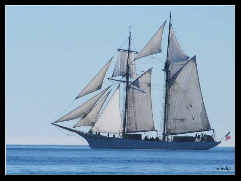 le bateau de Martin du 22 juillet trouvé par Martine 91428590