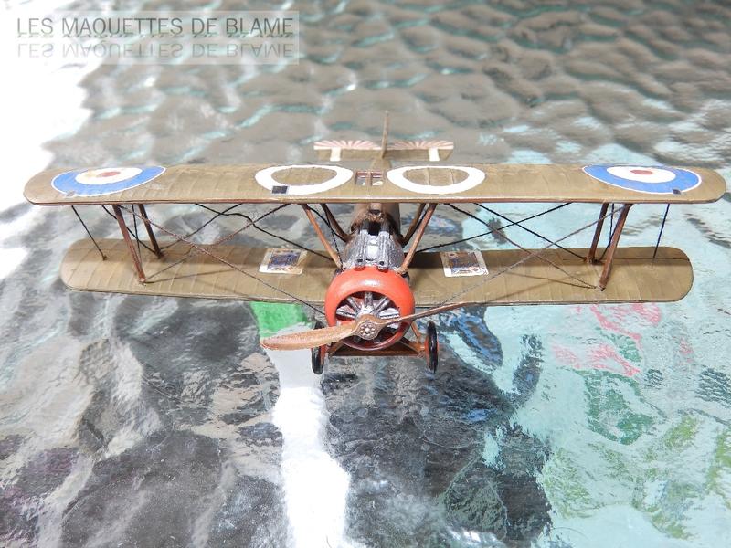 SOPWITH CAMEL F-1 [1/72] (N°3 NAVAL SQN, ROYAL NAVAL AIR SERVICE WALMER, DECEMBRE 1917) 116937776