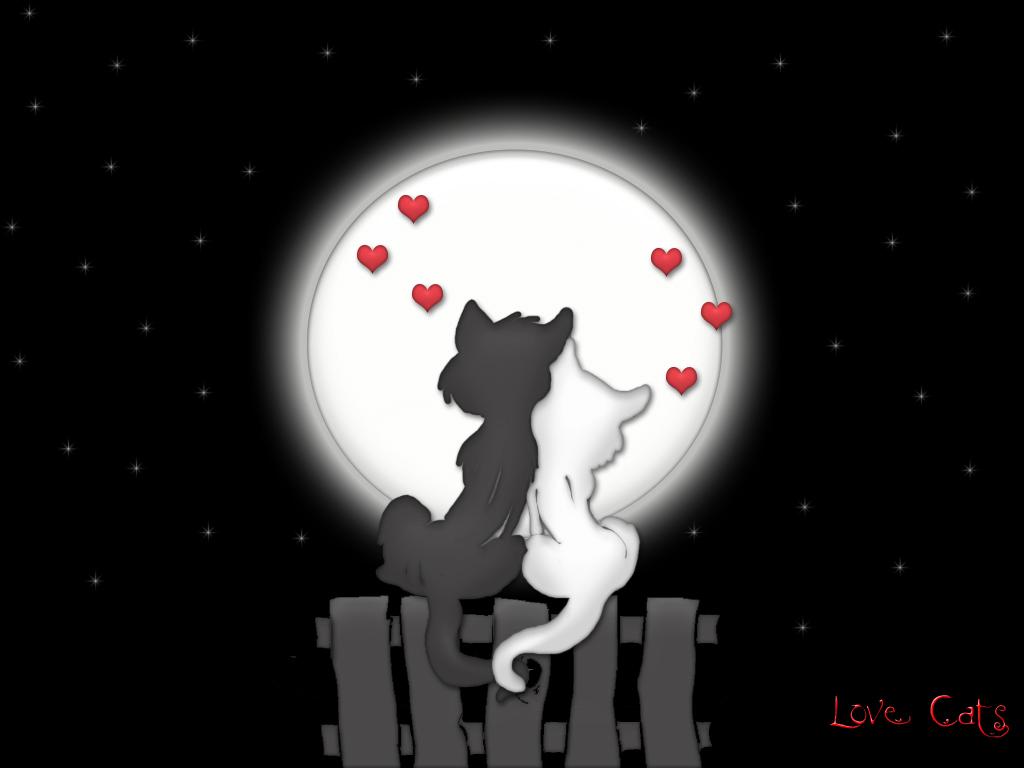 Magija crne Love_moon_cats1