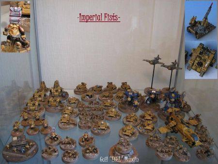 Imperial Fists multi-jeux 69730368_p