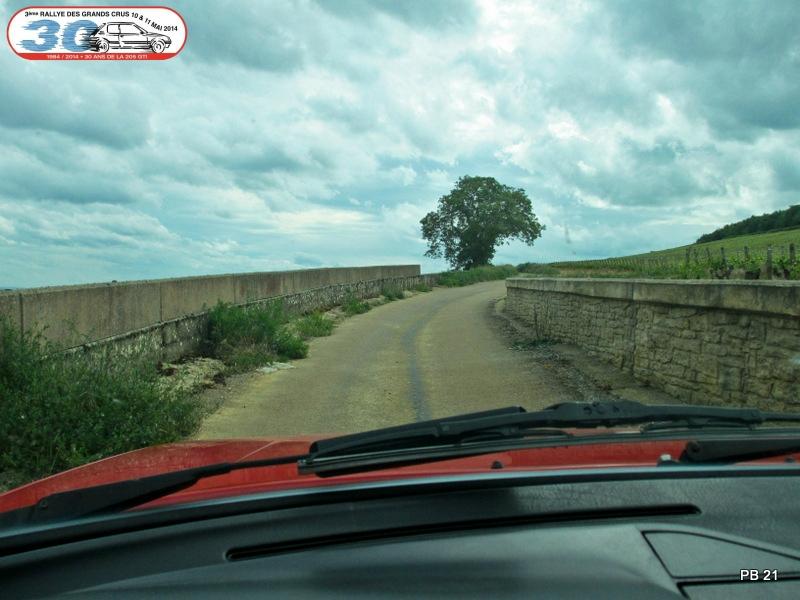 [21]  3ème Rallye des Grands Crus - 10 et 11 mai 2014 96136989_o