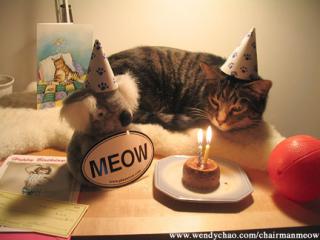 Ca y est c'est mon anniversaire ! 12560966