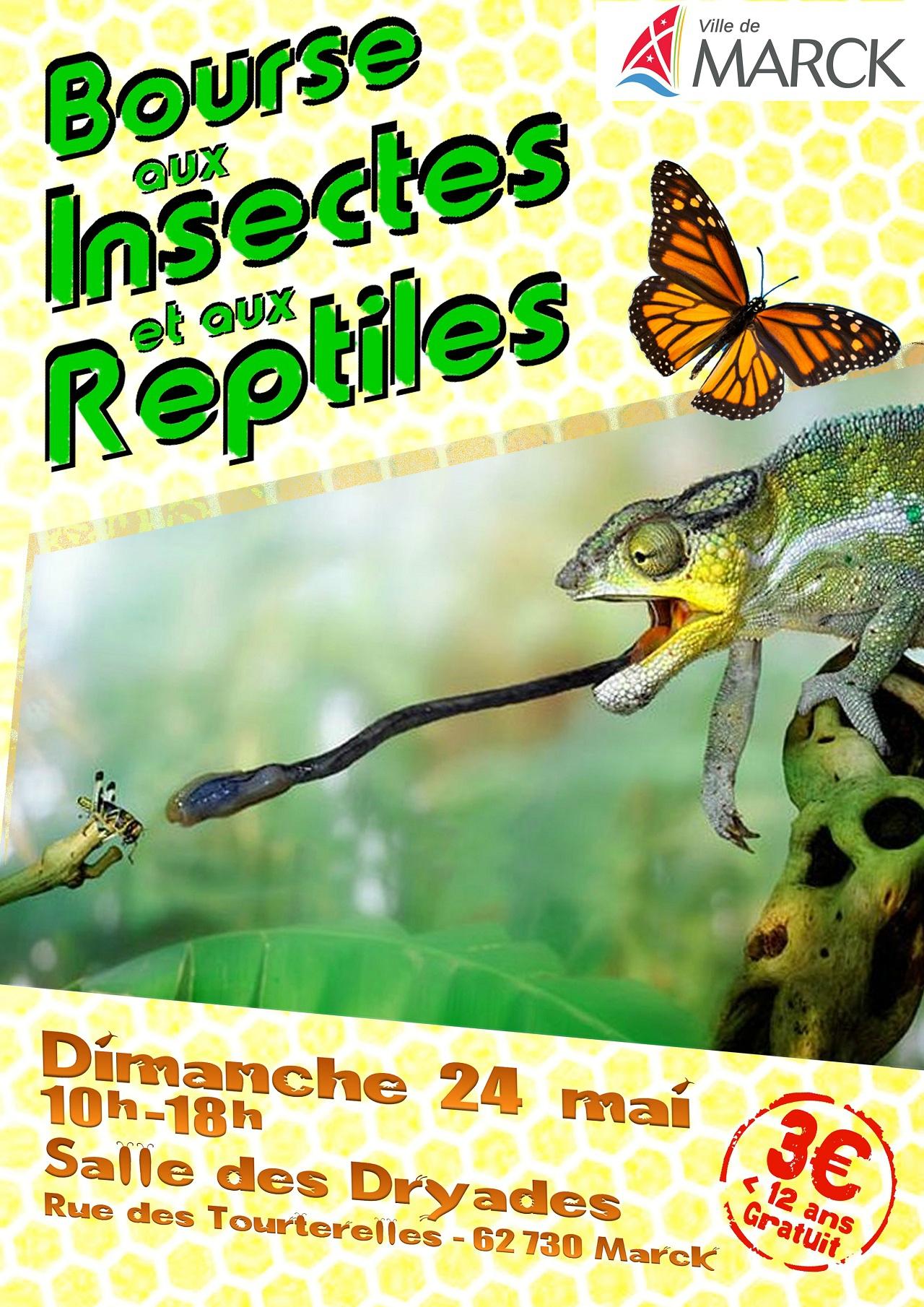 [62] Bourse reptiles et insectes 103130961_o