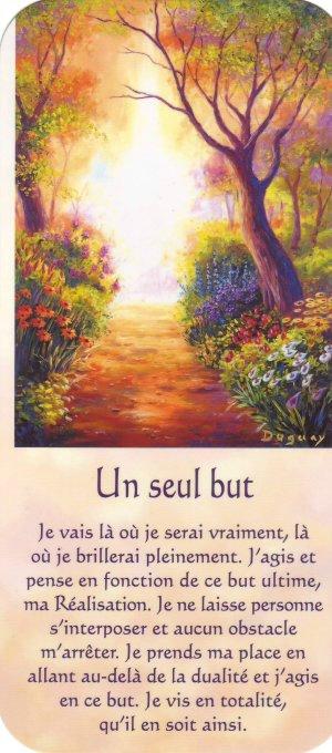 lumiere - Message Lumière - Mario Duguay 82053004_o