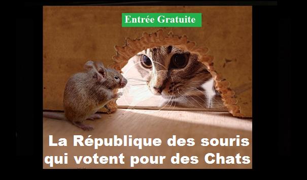 Qui est Emmanuel Macron ? - Page 2 115620677