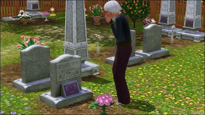 Je veux un Sims 70123037