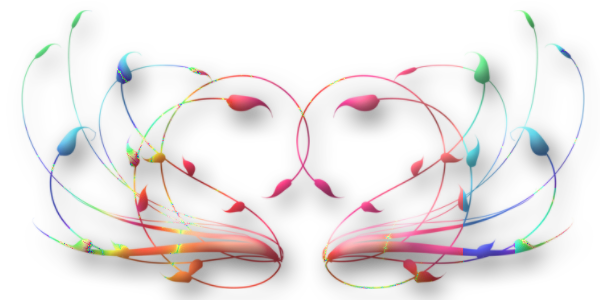 Se relier maintenant entre nous pour rayonner l'Amour - Page 16 97205021_o