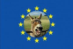 Europe, Trilatérale, mondialisme, soyez un conspirationniste : tôt ou tard, vous serez forcément dans le vrai - Page 3 98091958