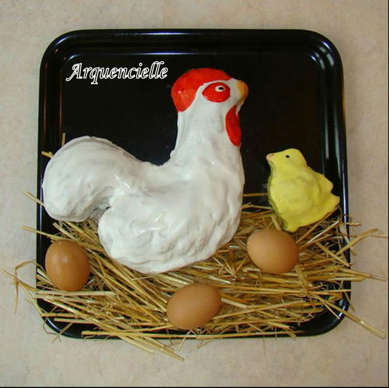 poule, coq, poussin, canard, oie 80853827_o