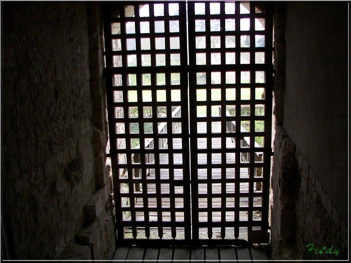 Le château d'Harcourt 20070324_036