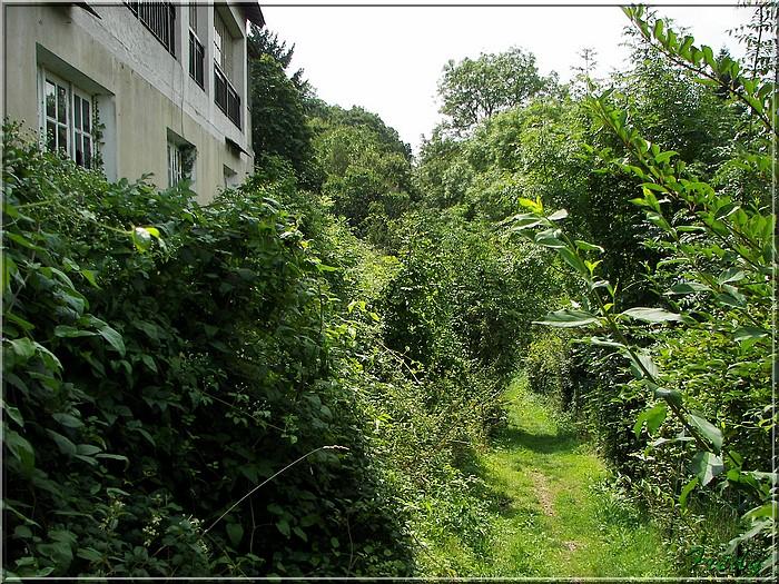 Entre Avre et Meuvette, je bois debout 20070812_001