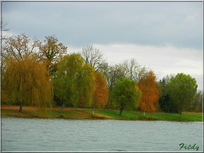 L'automne à l'étang de Croth 20071108_009
