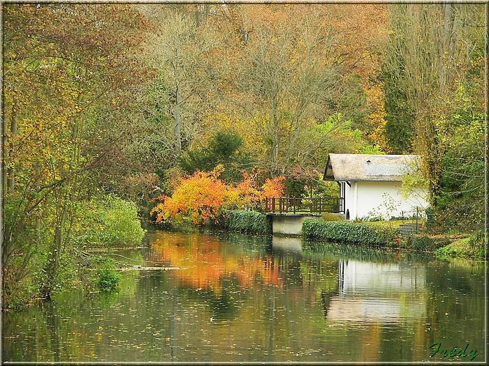 L'automne à l'étang de Croth 20071108_025