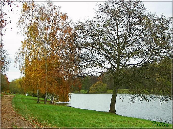 L'automne à l'étang de Croth 20071108_031