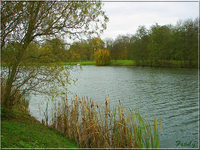 L'automne à l'étang de Croth 20071108_041