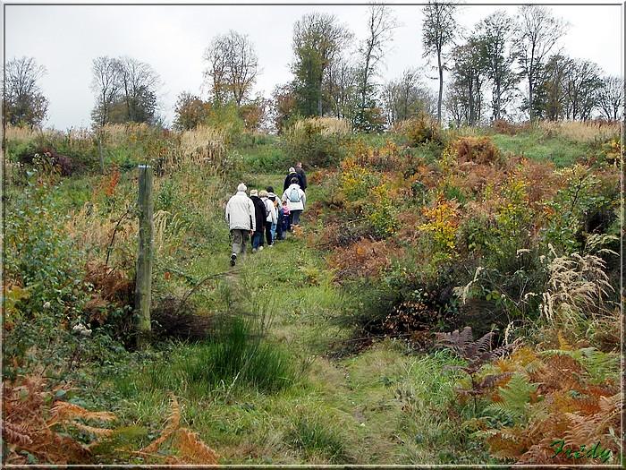 Les Brûlins, forêt de Bord-Louviers 20081030_032