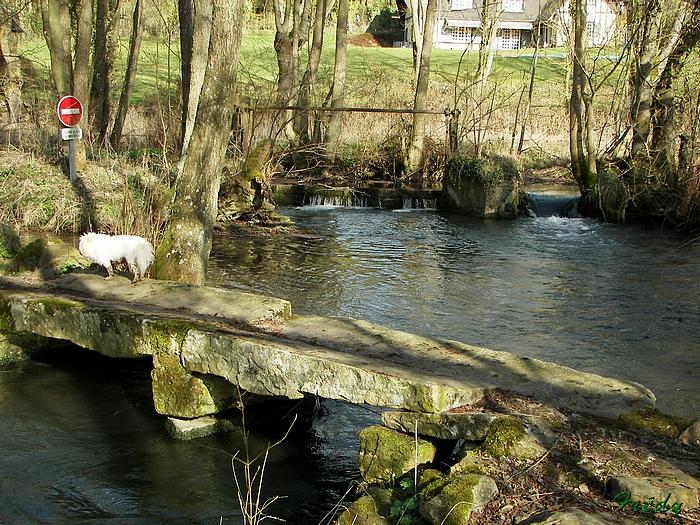 La Vallée du Gueil 20090315_108