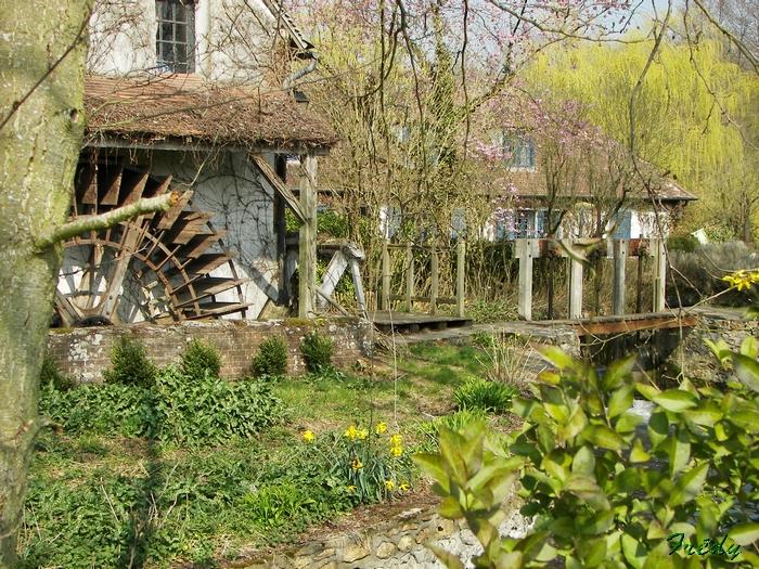 Le Moulin de Février. 20090402_035