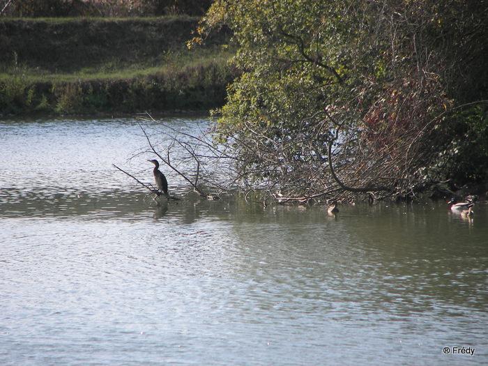 Fontaine Sous Jouy, avec OVS 20091012_010