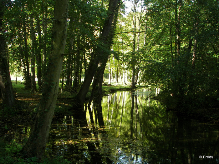 Fontaine Sous Jouy, avec OVS 20091012_016