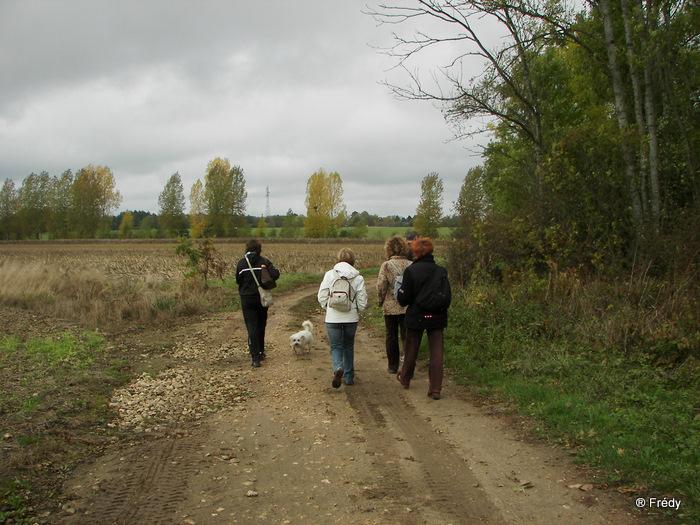 Cintray, le Chemin des Isles 20091023_009