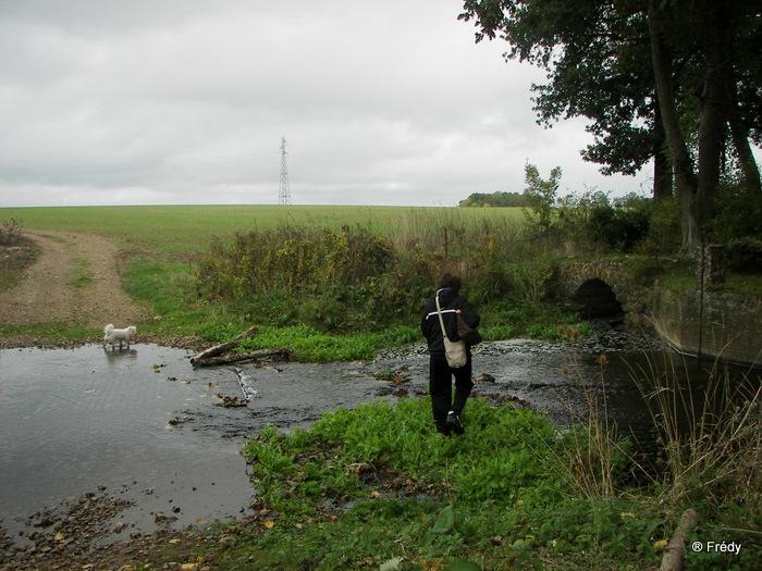 Cintray, le Chemin des Isles 20091023_011